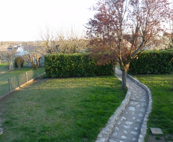 Location Maison 2 pièces La Croix-en-Touraine (37150) - 25 rue de la bessiere